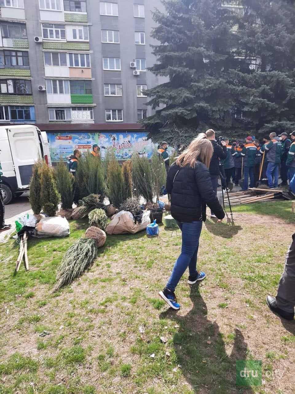 Озеленение Дружковки